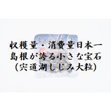 島根県 しじみ 宍道湖 大粒 収穫量日本一 消費量日本一 中浦食品 松江市