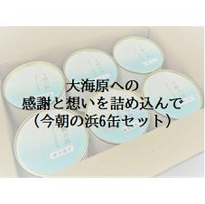浜田港 缶詰 シーライフ 今朝の浜