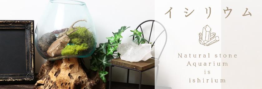 イシリウム -Natural Stone Aquarium-
